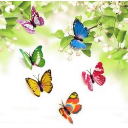 Creative Butterfly Style Popular Decal 3D Wall Stickers Home Decor- 6 pcs set